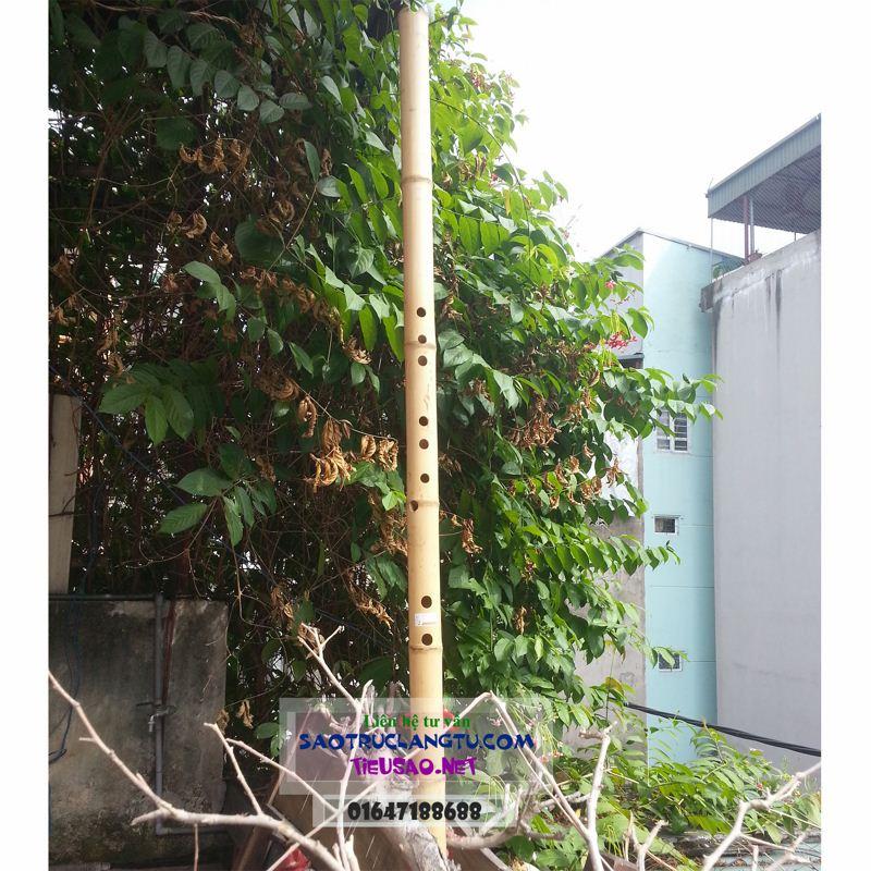 Động tiêu trúc bát khổng và các hệ khác loại tốt - tiêu Việt
